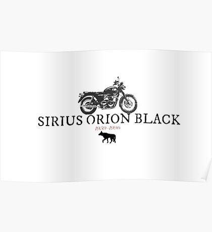 Sirius Orion Black Poster