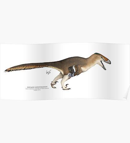 Utharaptor Poster