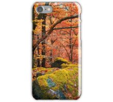 Mystery of Autumn iPhone Case/Skin