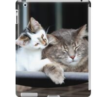 Little Brother, Big Brother iPad Case/Skin