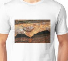 Ship's Anchor, A Study In Decay  Unisex T-Shirt