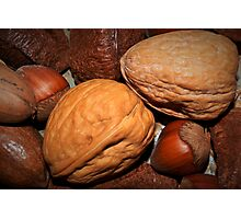 Oh nuts! Photographic Print