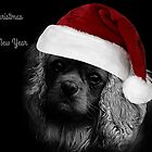 And A Merry Christmas From Charlie by Ladymoose