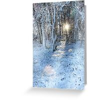 Christmas Magic in the Woods Greeting Card