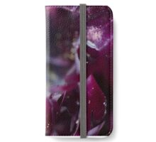Tulipa 'Black Parrot' tulip iPhone Wallet/Case/Skin