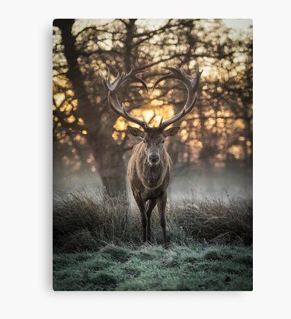 Love you Deer Canvas Print