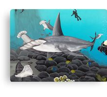 Beautiful Hammerhead Shark Painting  Canvas Print