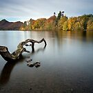 Shades of autumn on Derwent Isle - English Lake District by Martin Lawrence