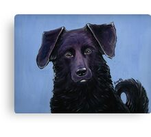 Handsome Dog Canvas Print