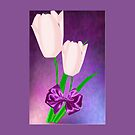 2 Pink Tulips (7741 Views) by aldona