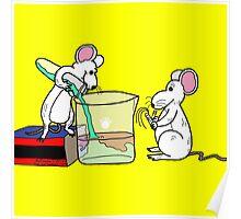 Lab Mice Poster