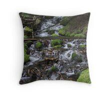 Falling Cascades of the Cascade Mountains Oregon Throw Pillow