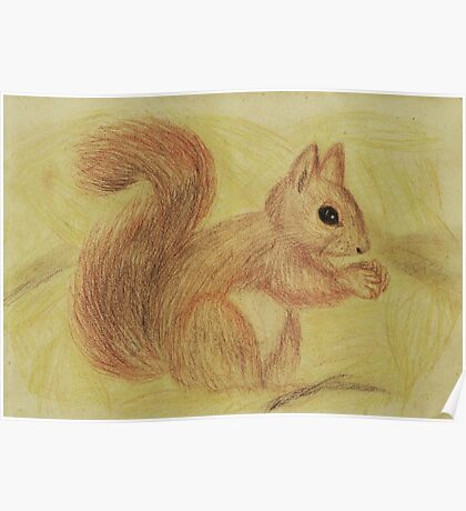 Squirrel in the Autumn Forest Poster