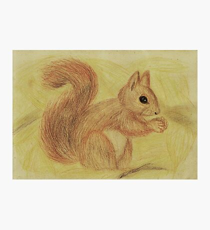 Squirrel in the Autumn Forest Photographic Print
