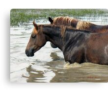 """Horses with Attitude no. 7, 'Race Ya Across the Pond, Joe. Loser Buys a Round!'""... prints and products Canvas Print"