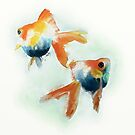 Goldfish by Catherine Gabriel