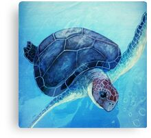 Beautiful Blue Sea Turtle Ocean Painting  Canvas Print