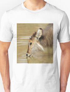 Waterbuck Gold - Pleasure of Life Unisex T-Shirt