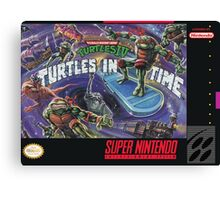 Turtles In Time! Canvas Print