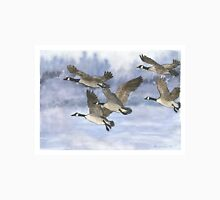 Canadian Geese Take Flight Men's Baseball ¾ T-Shirt