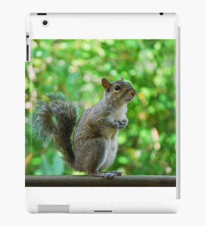 Excuse please, can spare a peanut? iPad Case/Skin