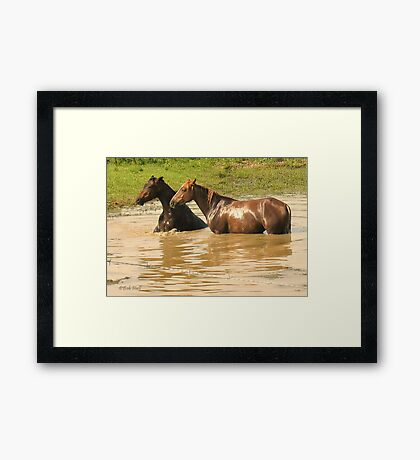 """Horses with Attitude no. 6,  'Yo, Stud, Ya Gettin' On My Last Nerve!'""... prints and products Framed Print"