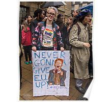 Never gonna give EU up Poster