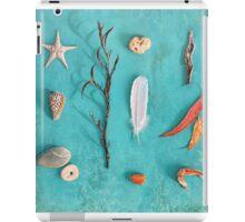 Sea, Land & Sky iPad Case/Skin