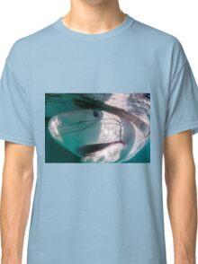 Researchers are tagging a sandbar shark (Carcharhinus plumbeus)  Classic T-Shirt