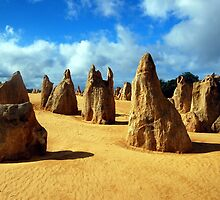 The Pinnacles, Nambung National Park, Western Australia by Adrian Paul
