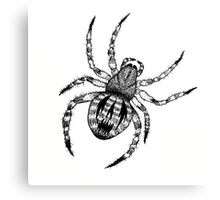 THE SPIDER Canvas Print