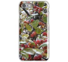 Apple apples  under the snow  iPhone Case/Skin
