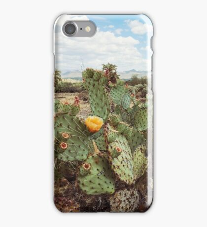 Superstitious Arizona Desert Mountain Cactus Bloom iPhone Case/Skin