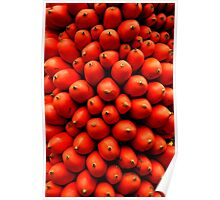 Exotic Fruit Poster