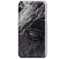 Pony At The Fence iPhone Case/Skin