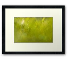 The closest green Framed Print