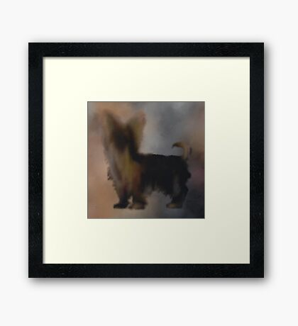 Bill the Yorkie Framed Print