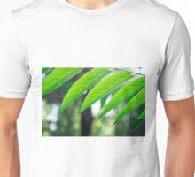 Defocused and blurred branch ailanthus  Unisex T-Shirt