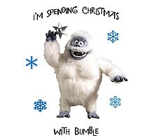 Bumble for Christmas Photographic Print