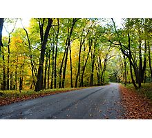 Fall forest road Photographic Print