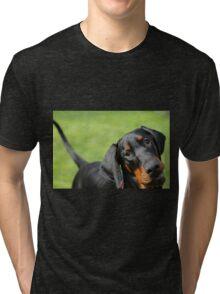 Mr Darcys Goofy Grin Tri-blend T-Shirt