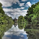 River Bure Wroxham to Coltishall by Avril Harris