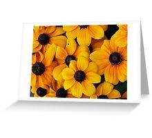Blackeyed Susan Flowers Greeting Card