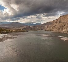 Bow River  by Ron Finkel