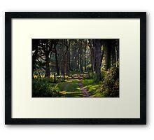 Whitford burrows gate Framed Print
