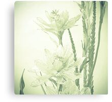 Glass flowers Canvas Print