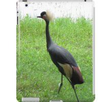 Talk to the Tail iPad Case/Skin