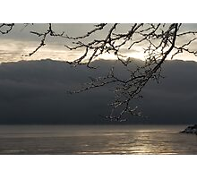 Cold Beauty - Ice Covered Branches at the Waterfront Photographic Print