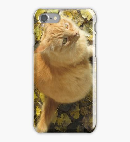 Where's Them Tweets? iPhone Case/Skin