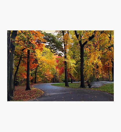 Peak Autumn Path Photographic Print